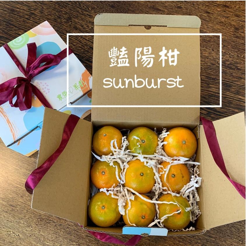 農滎果彩豔陽柑禮盒