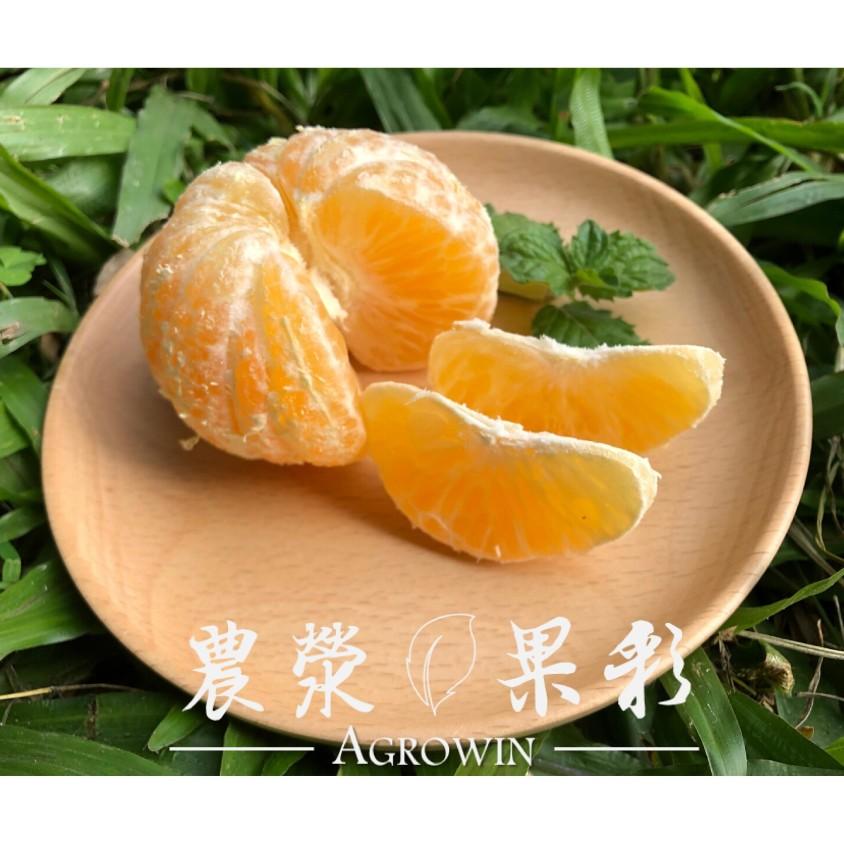 農滎果彩推出豔陽柑橘禮盒,運用草生栽培、友善耕作方式,品嘗起來不似白柚、茂谷的濃郁酸甜,反而有種清甜甘味、溫潤平順,值得您品嚐一試。