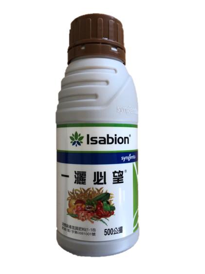 一灑必望能葉面補充高純度的月甫胺酸(Proline),使文旦樹能抗逆境及快速補充養份