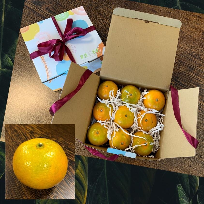 農滎果彩推出豔陽柑橘禮盒,運用草生栽培、友善耕作方式,品嘗起來不似白柚、茂谷的濃郁酸甜,反而有種清甜甘味, 溫潤平順,值得您品嚐一試。