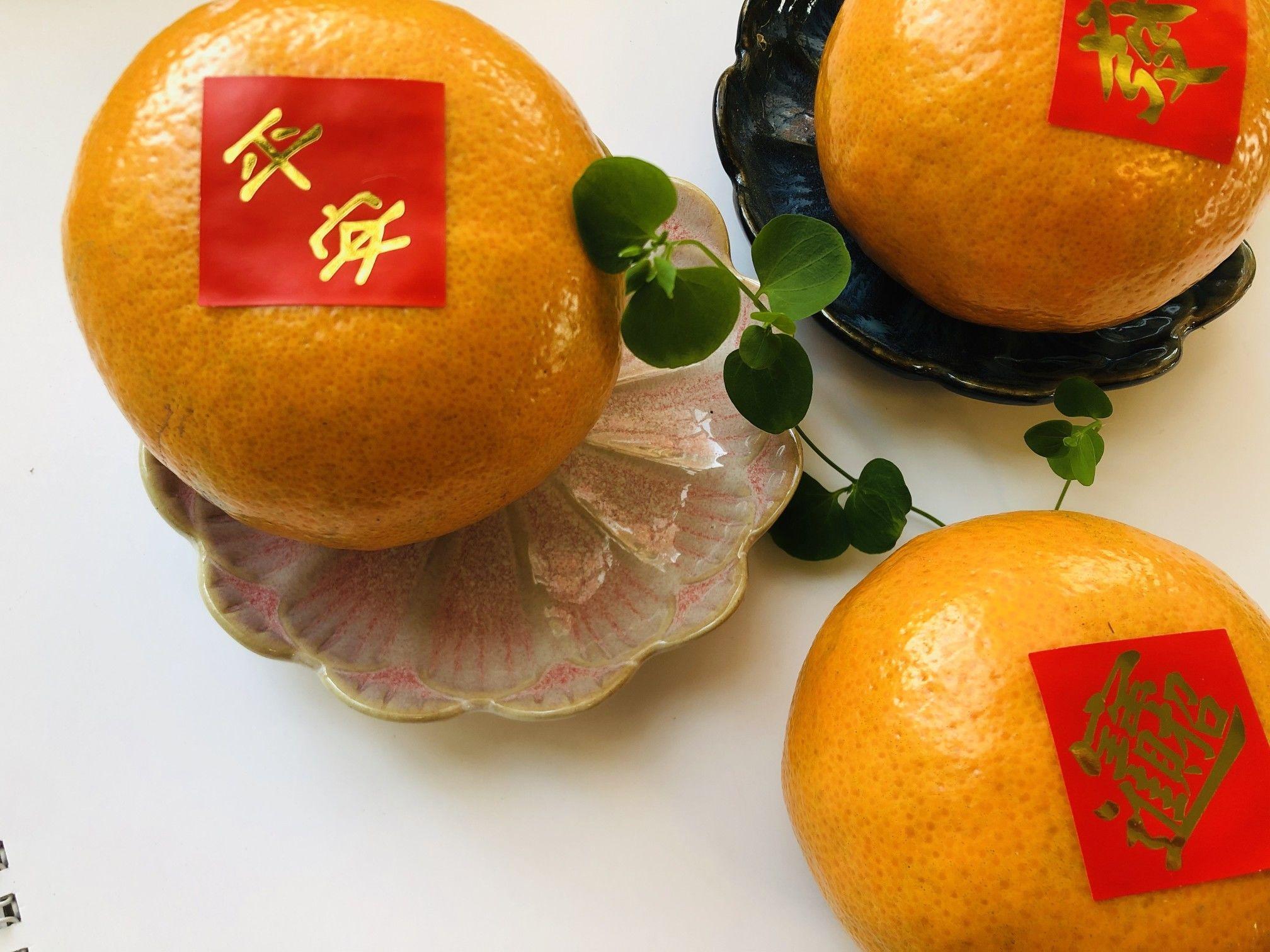 2021新年茂谷柑禮盒賣囉!澄黃圓潤的外觀,酸甜多汁的口感,一直都是國人喜愛送禮的首選,農滎果彩優選的果物,現正450免運優惠中!